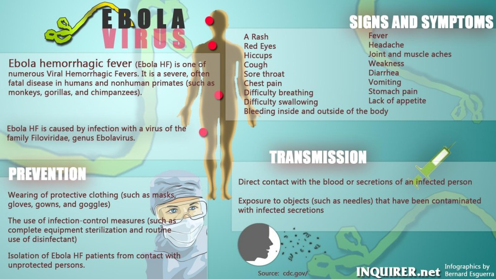 ebola virus essay Ebola research papers examine the symptoms and origin of the destructive disease paper masters has researchers that write on ebola and other medical health diseases.