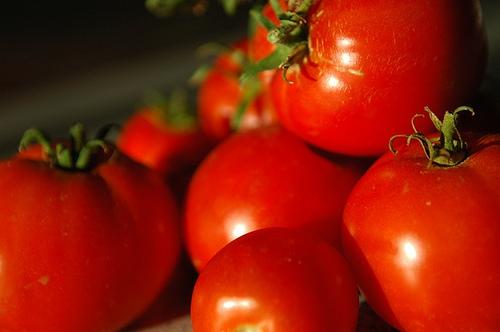 Tomatoes-1085617988_edc33bce22