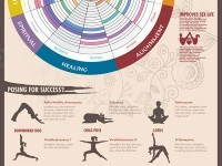 Yoga for starter Infographic