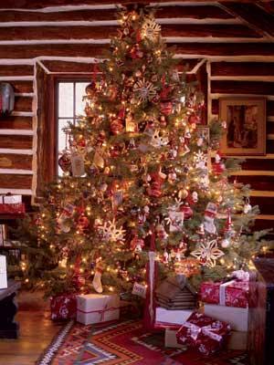 type of christmas tree