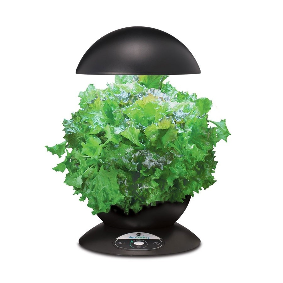 aerogarden gourmet herb seed kit