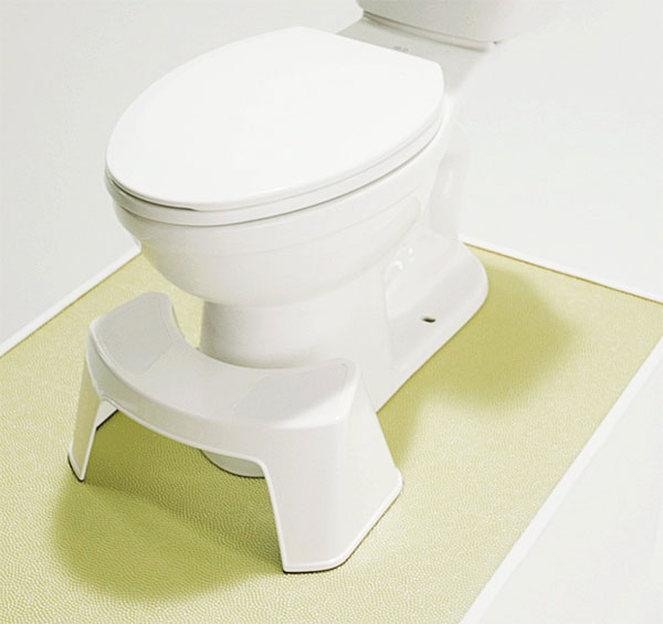 easy gopro toilet stool