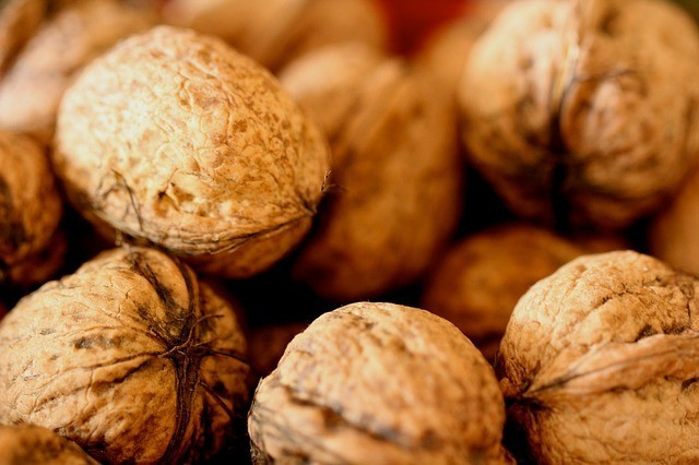 Walnuts photo