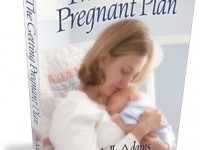 the getting pregnant plan
