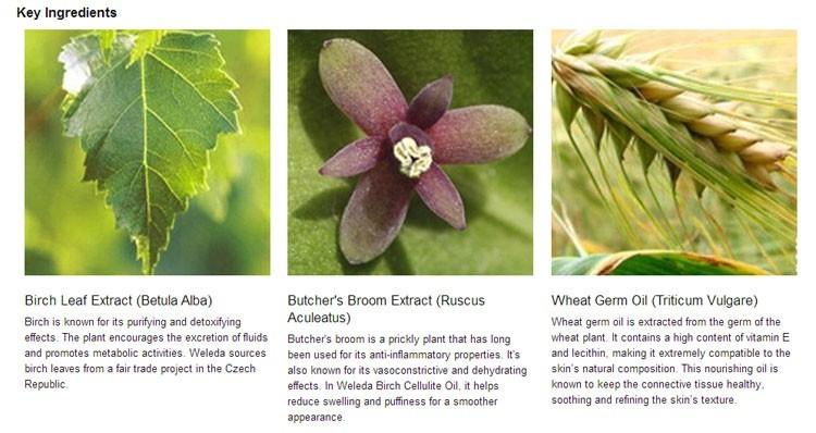 weleda birch cellulite oil ingredients